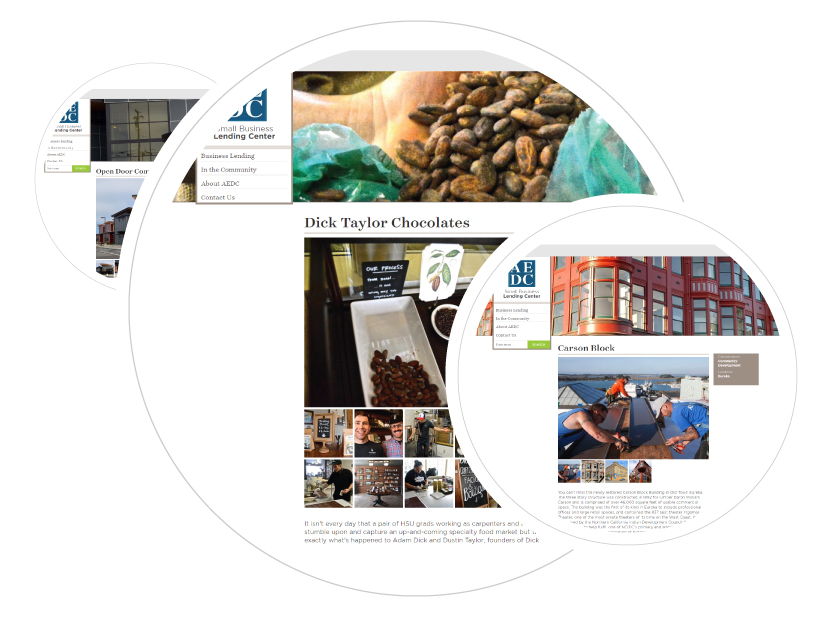 Screen Shot of success story profiles for AEDC and the accompanying features