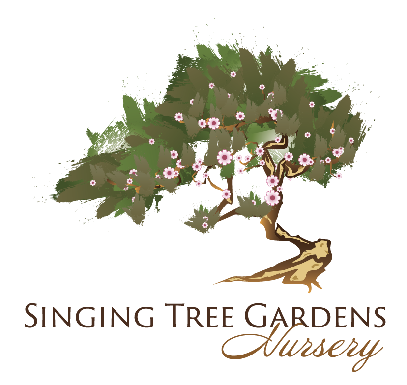 Singing Tree Garden's Logo in Case Study by EvenVision